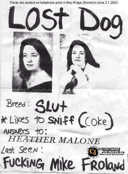 Lost Dog Ad