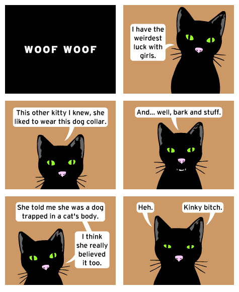 Cat's Thoughts