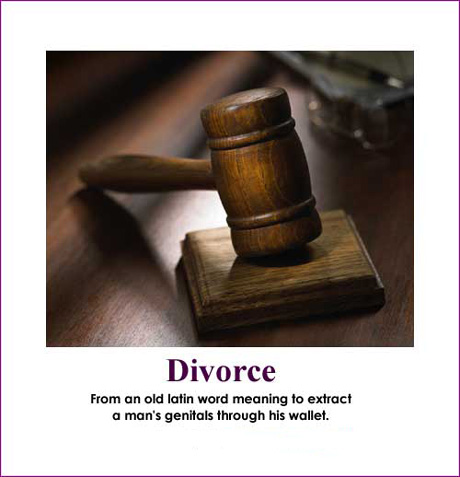 Divorce, defined