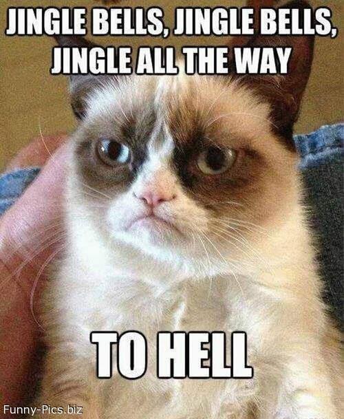 Christmas Cats: Jingle Bells