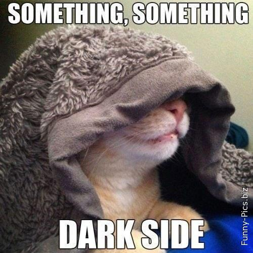Crazy Cats: The Dark Side