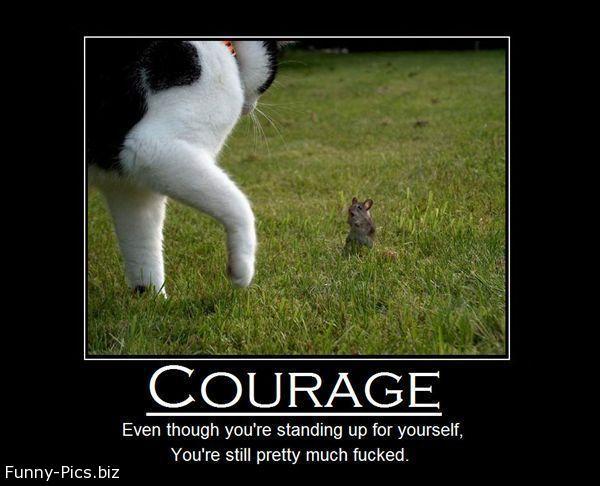 Crazy Motivationals: Courage
