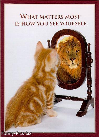 Crazy Motivationals: Self Esteem