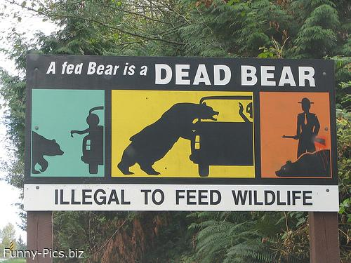 Crazy Signs: do not feed bears