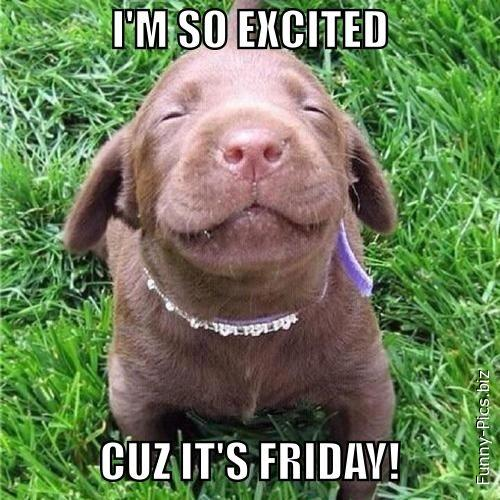 Excited for Friday
