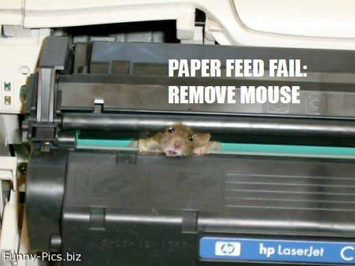 Failures: Paper feed