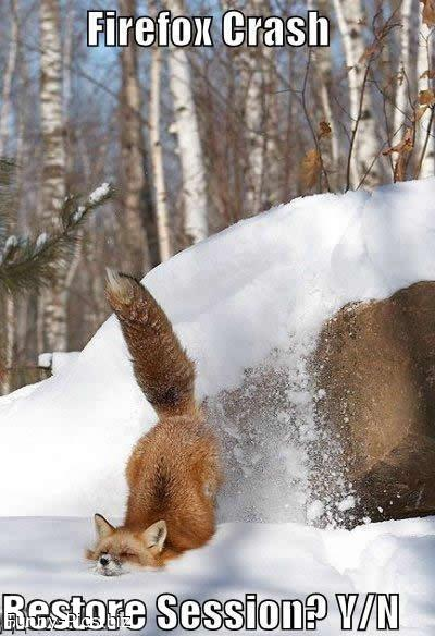 Firefox Crash