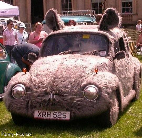 Funny Cars: Bunny Mobile