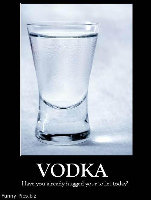 Funny Motivationals: Vodka