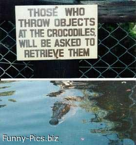 Funny Signs: Don't throw to crocodiles