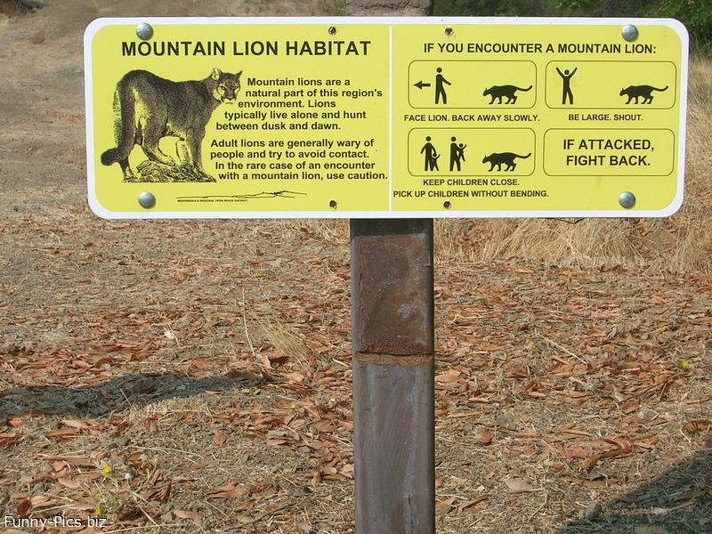 Funny Signs: Mountain Lion