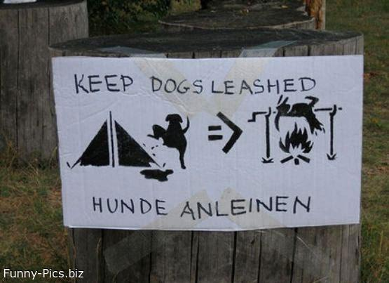 Funny Signs: No Unleashed Dogs