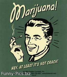 Funy Signs: Marijuana