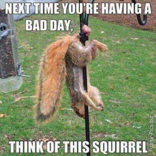 If you had a Bad day