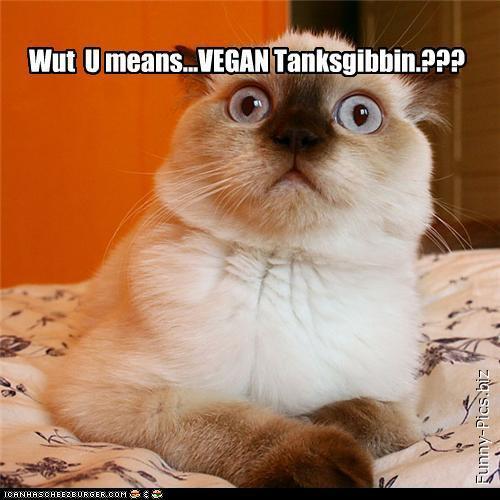 LolCats: Vegan thanksgiving?