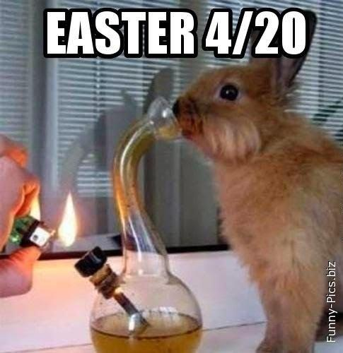 Next Easter's party