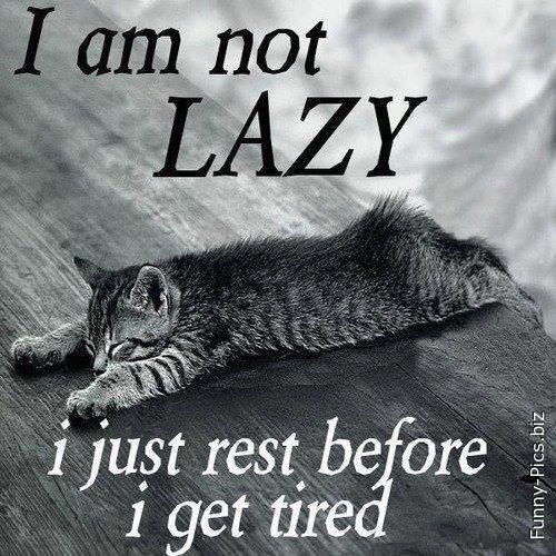 Not Lazy...