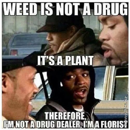 Points of view about weed