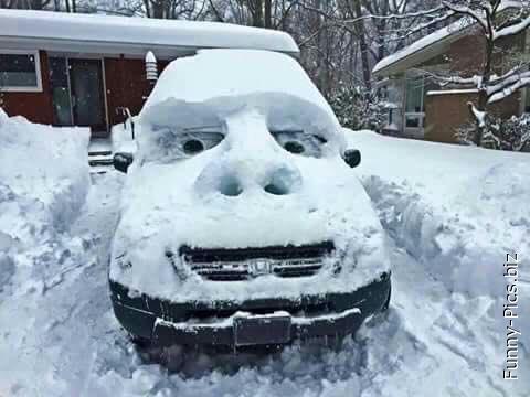 Shrek + Cars