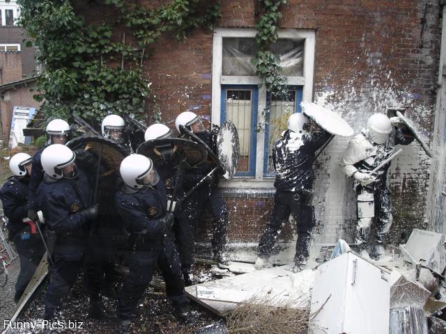 White fighting